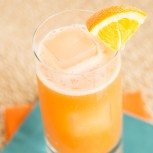 Florida Punch Recipe