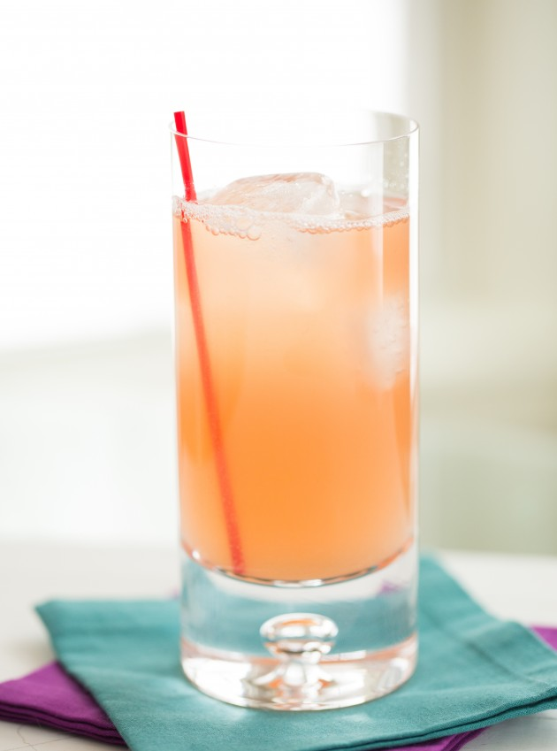 Bay Breeze Recipe