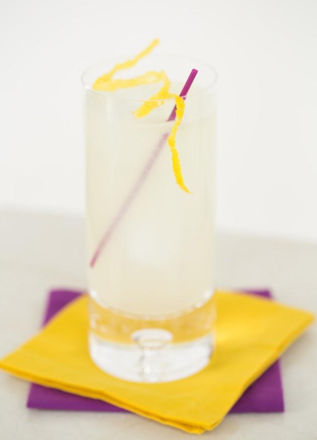 Imperial Gin Recipe