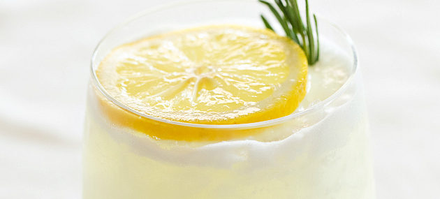 Rosemary Lemon Gin Fizz-8-630